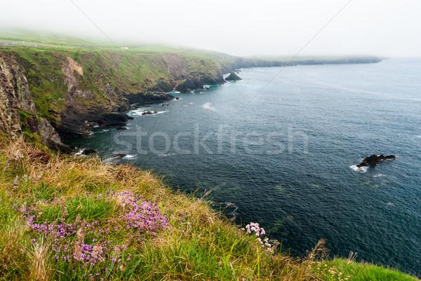 Stock fotó: Fej · félsziget · alacsony · szint · felhők · tengerpart