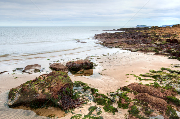 East coast of Irish Sea in Malahide, Ireland Stock photo © rafalstachura