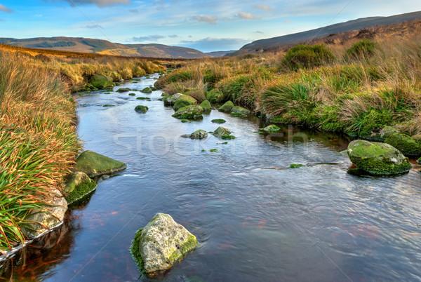 ダブリン 山 風光明媚な 表示 地形 ストックフォト © rafalstachura