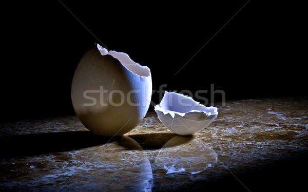 Kaçış fotoğraf kırık yumurta taş Stok fotoğraf © ralanscott