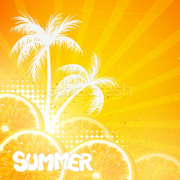 Stok fotoğraf: Vektör · yaz · turuncu · meyve · dizayn · damla