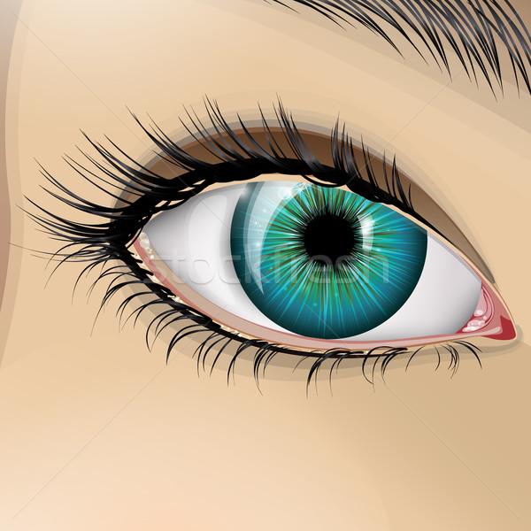 вектора глаза синий девушки красоту молодые Сток-фото © RamonaKaulitzki