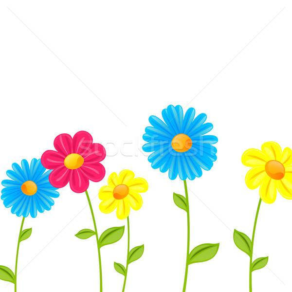 Vektör bahar çiçekleri soyut renkli çiçek doğa Stok fotoğraf © RamonaKaulitzki