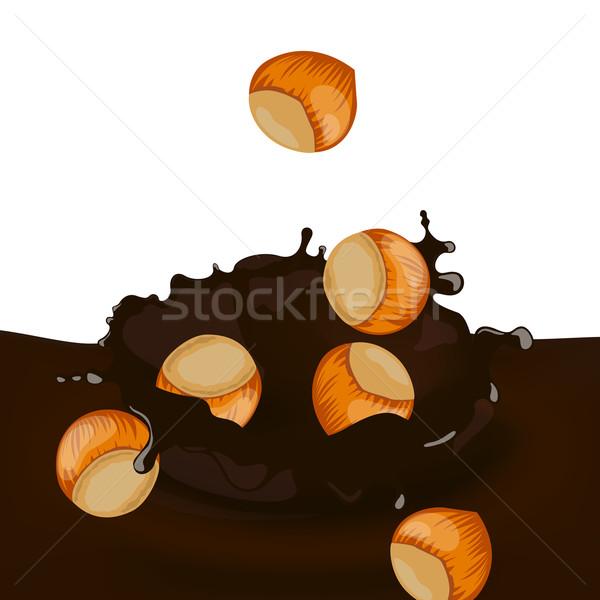 Vektör fındık sıçrama gıda kahve Stok fotoğraf © RamonaKaulitzki