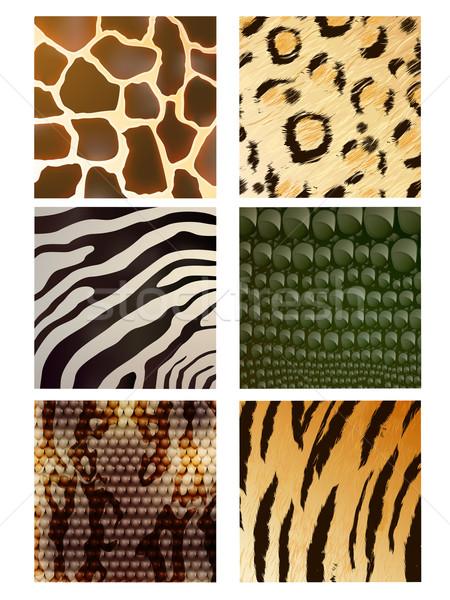 Stock photo: Vector Animal Skins