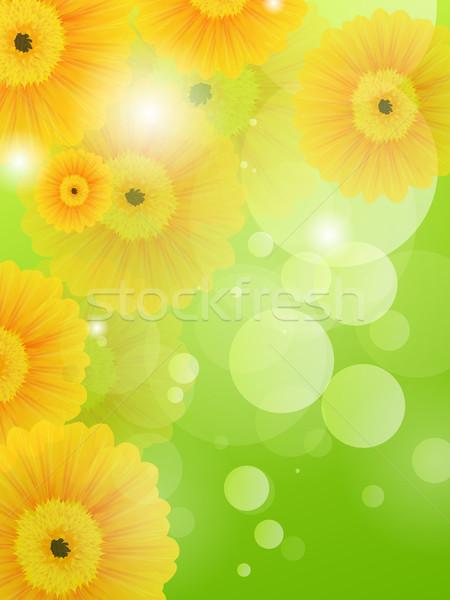 вектора весенние цветы цветочный весны саду красоту Сток-фото © RamonaKaulitzki