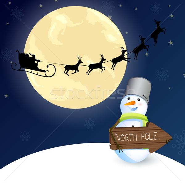 Vector Navidad invierno azul silueta viento Foto stock © RamonaKaulitzki