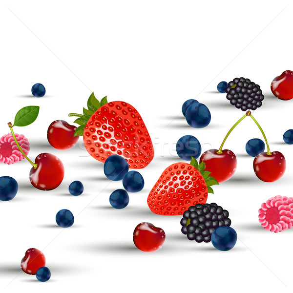 Vector Berries Stock photo © RamonaKaulitzki