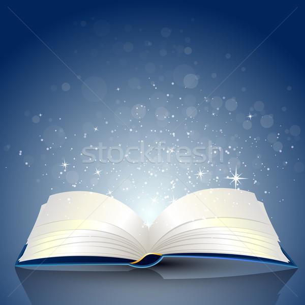 вектора книга открытой книгой жизни рисунок тень Сток-фото © RamonaKaulitzki
