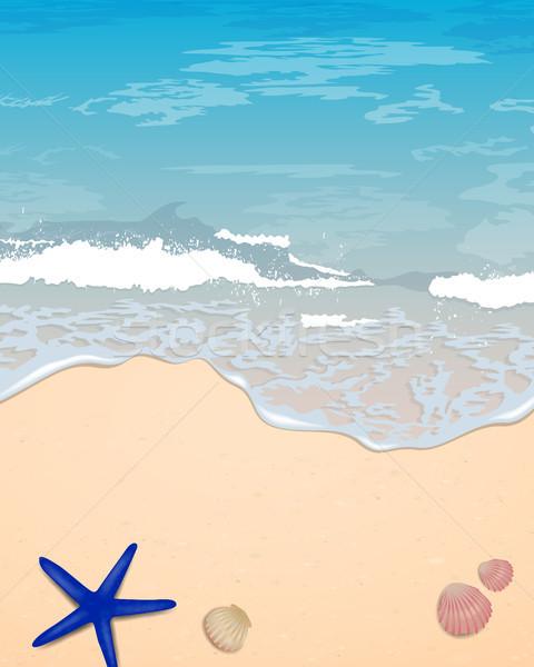 Vektör yaz plaj dizayn soyut deniz Stok fotoğraf © RamonaKaulitzki