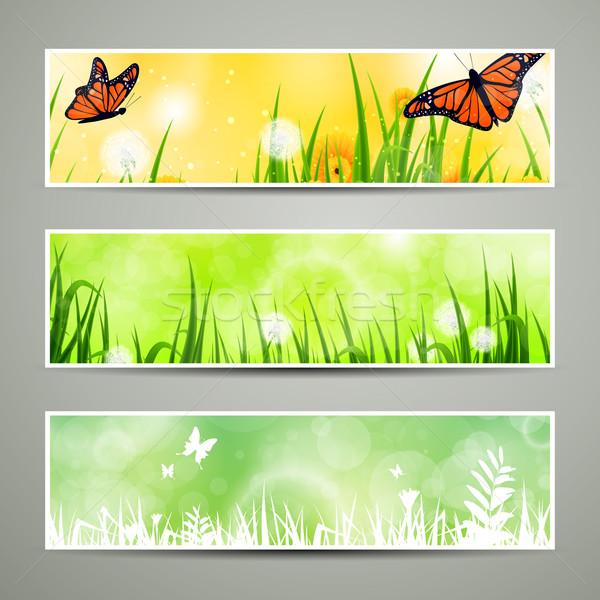 аннотация вектора Баннеры декоративный природы весны Сток-фото © RamonaKaulitzki