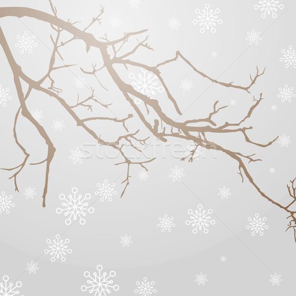 Stok fotoğraf: Kış · soyut · doğa · manzara · siluet · bitki