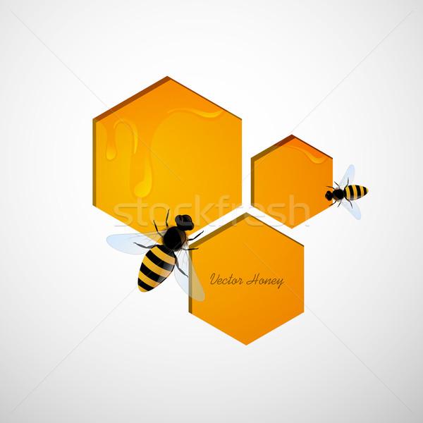 вектора меда природного бумаги природы дизайна Сток-фото © RamonaKaulitzki