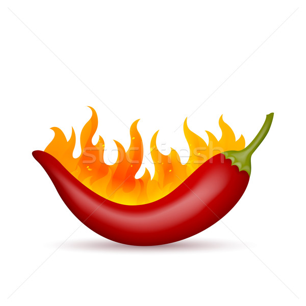 Vetor pimenta chamejante vermelho fogo projeto Foto stock © RamonaKaulitzki