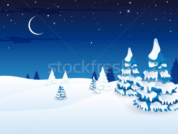 Vektör Noel kış manzara gökyüzü ahşap Stok fotoğraf © RamonaKaulitzki