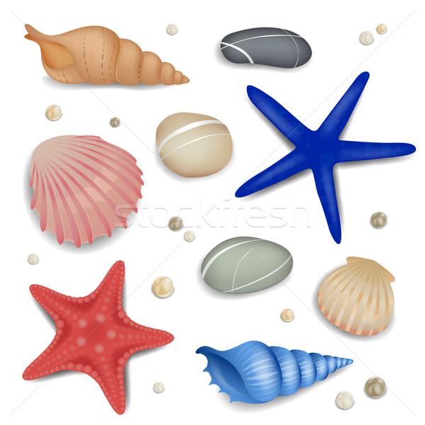 Vector Seashells, Starfishes and Pebbles Stock photo © RamonaKaulitzki
