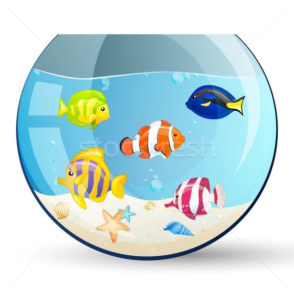 Vector Fishes Stock photo © RamonaKaulitzki