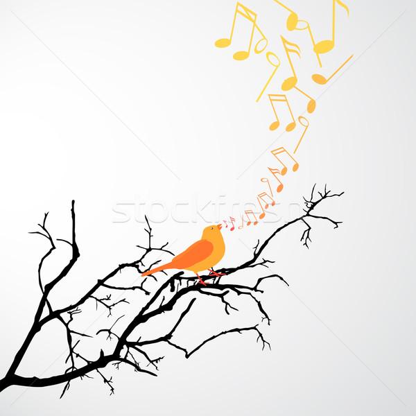 пения птица филиала музыку дерево фон Сток-фото © RamonaKaulitzki