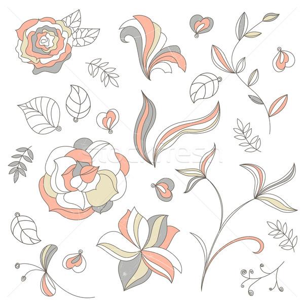 декоративный вектора Элементы коллекция дизайна цветок Сток-фото © RamonaKaulitzki