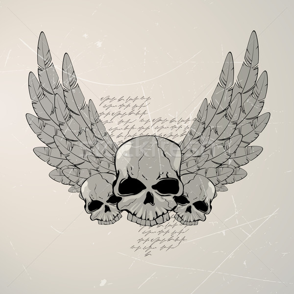 Vector Vintage Skull Stock photo © RamonaKaulitzki