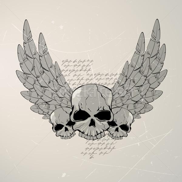 ベクトル ヴィンテージ 頭蓋骨 翼 抽象的な 自然 ストックフォト © RamonaKaulitzki