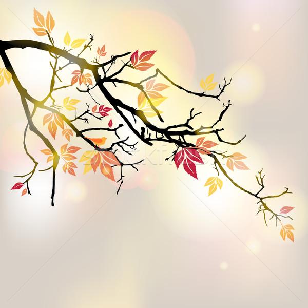 Stock photo: Vector Autumn Background
