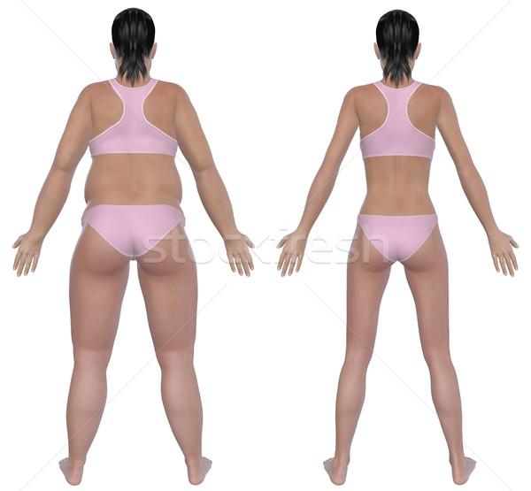 Gewichtsverlust Rückansicht Illustration Übergewicht weiblichen gesunden Stock foto © RandallReedPhoto