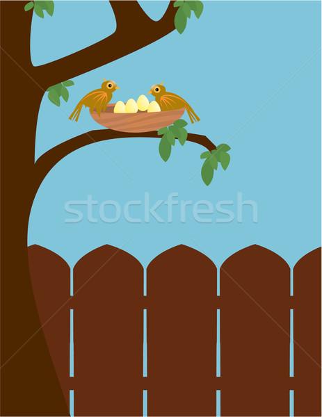 屋外 鳥 シーン 2 ブラウン 鳥 ストックフォト © randomway