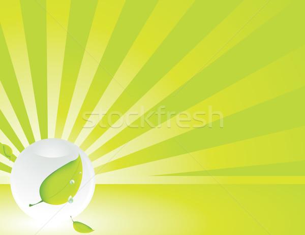 Sfera foglia spazio copiare acqua verde Foto d'archivio © randomway