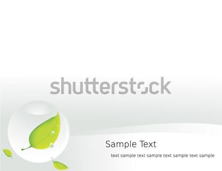 Sfera foglia bianco copia spazio acqua drop Foto d'archivio © randomway