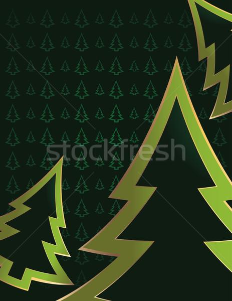 Luminoso verde pino albero Foto d'archivio © randomway