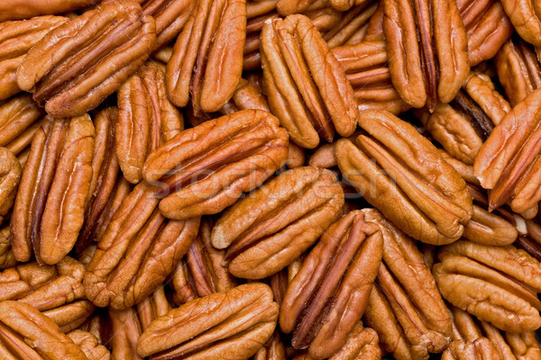 Shelled Pecans (Carya illinoinensis) Stock photo © raptorcaptor