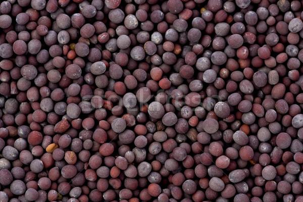 Zwarte mosterd zaden textuur Stockfoto © raptorcaptor