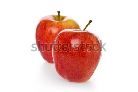 Twee Rood appels geheel witte voedsel Stockfoto © raptorcaptor