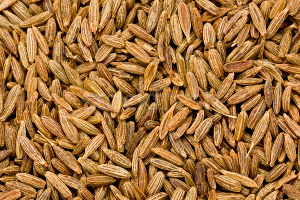 Funcho sementes textura fundo cozinhar macro Foto stock © raptorcaptor