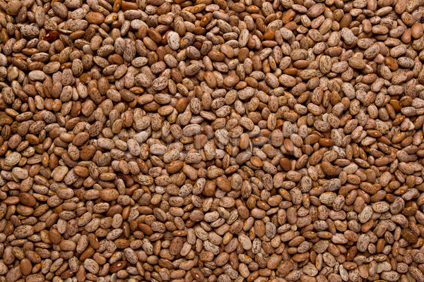 Pinto Beans Stock photo © raptorcaptor