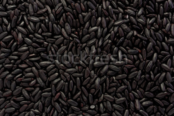 Forbidden Rice Stock photo © raptorcaptor