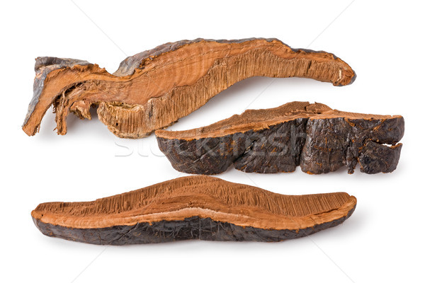 Dried Lingzhi mushroom (Ganoderma lucidum) Stock photo © raptorcaptor