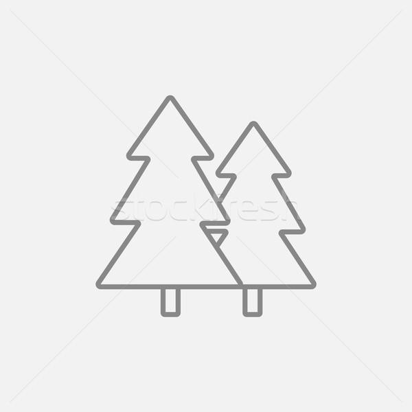 Pine trees line icon. Stock photo © RAStudio