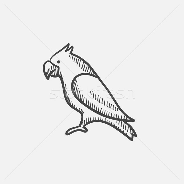 Parrot sketch icon. Stock photo © RAStudio