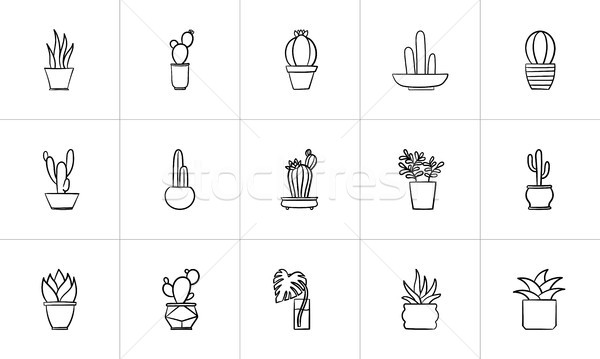 House potted plants and flowers sketch icon set. Stock photo © RAStudio