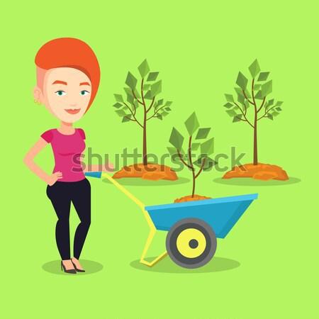 Femme poussant brouette usine jardinier arbre Photo stock © RAStudio