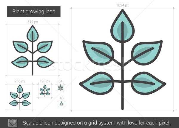 Bitki büyüyen hat ikon vektör yalıtılmış Stok fotoğraf © RAStudio