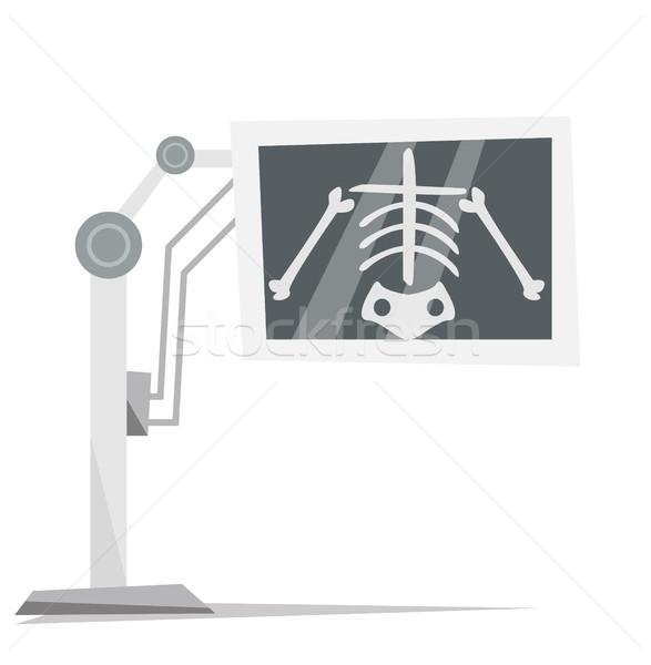 Xray машина изображение скелет вектора дизайна Сток-фото © RAStudio