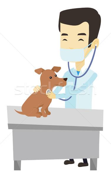 Stock photo: Veterinarian examining dog vector illustration.