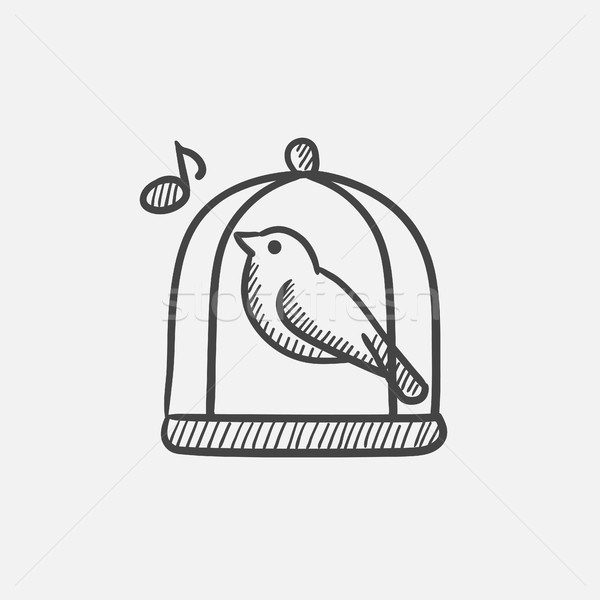 Foto stock: Pássaro · cantando · gaiola · esboço · ícone