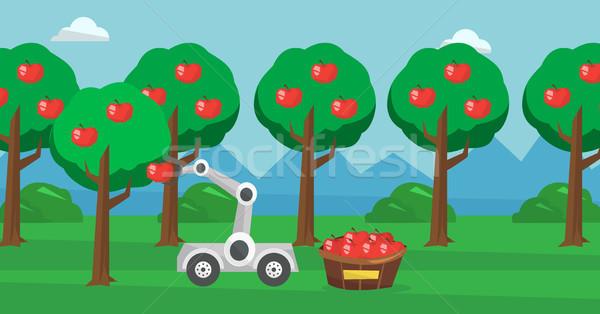 Robot picking apples at harvest time. Stock photo © RAStudio