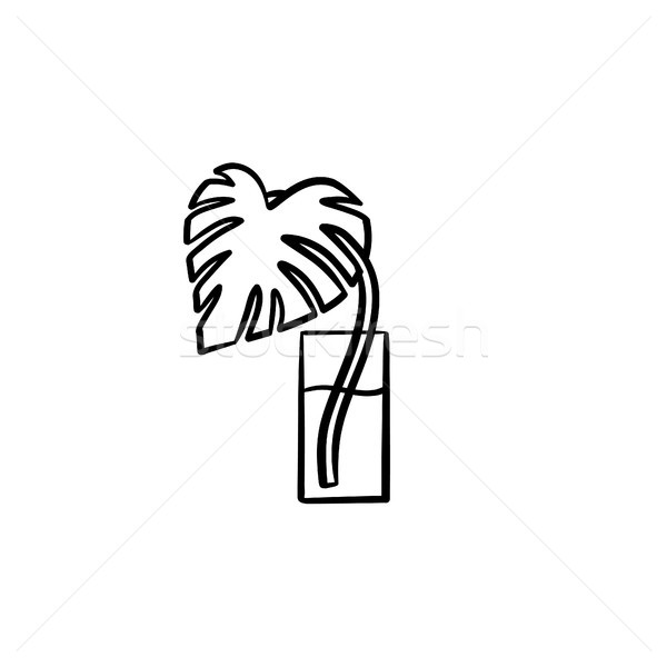 Palm sprout in a glass hand drawn sketch icon. Stock photo © RAStudio