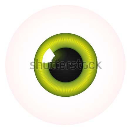 Vector eye Stock photo © RAStudio