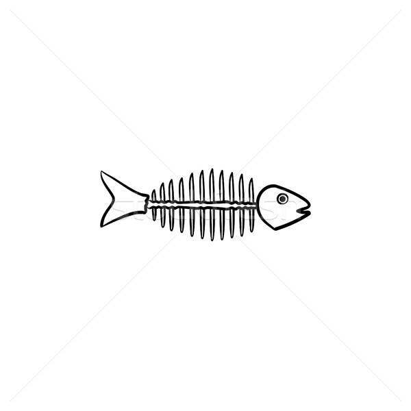 Rotten fish skeleton with bones drawn sketch icon. Stock photo © RAStudio